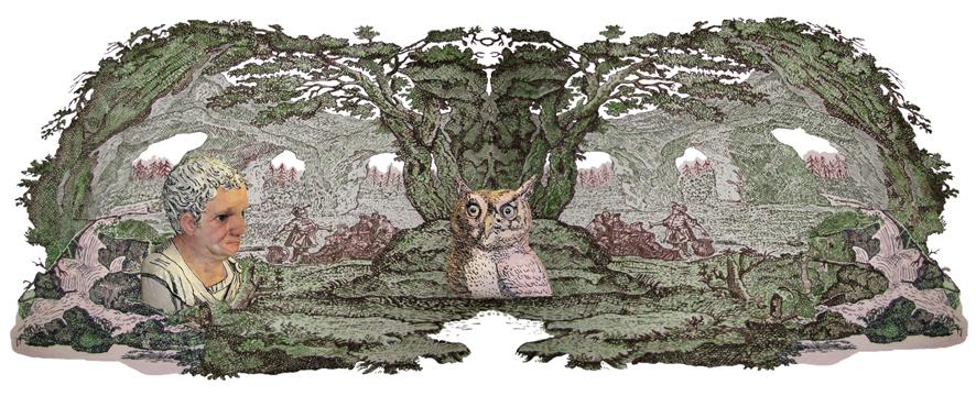 Owl Man , 2008-2011, Digital print on archival rag, 72 x 190 cm