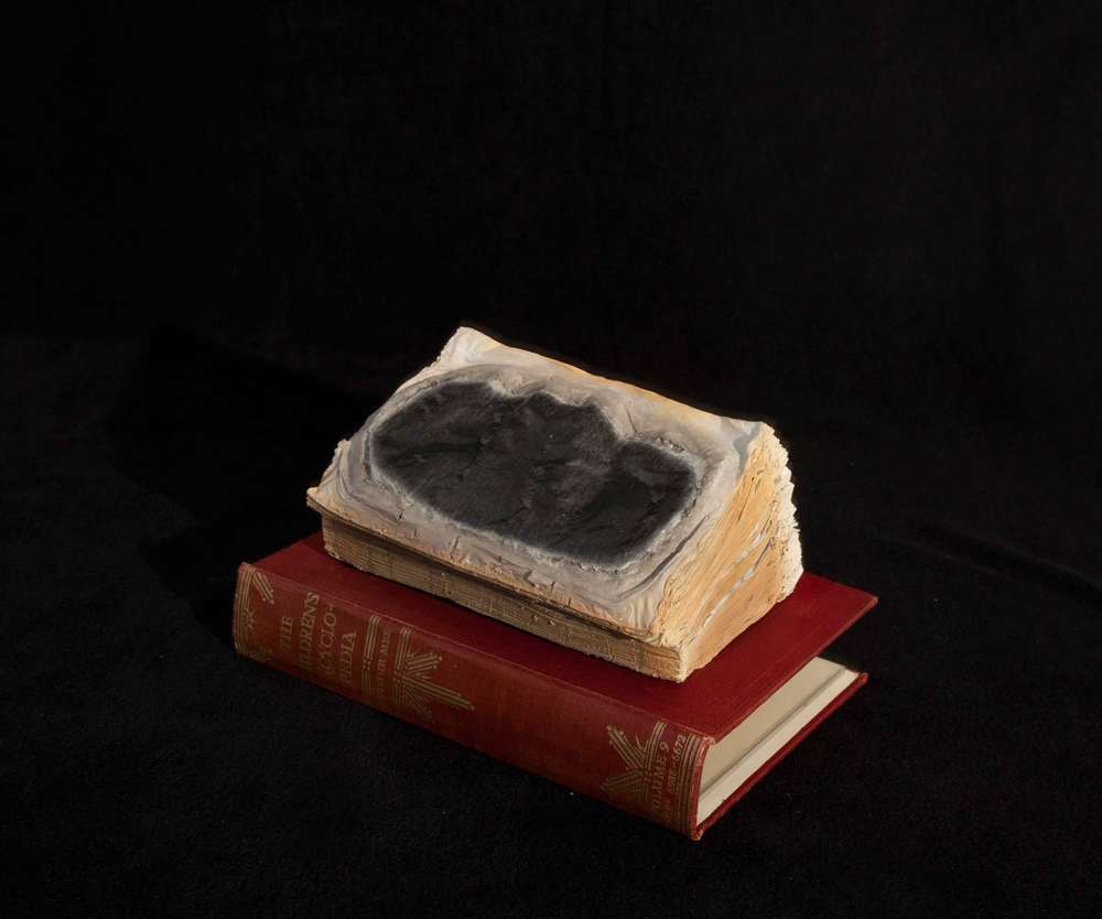 Cyrus Tang,  Children's Encyclopaedia Vol. 9,  2016, cremated book ashes, book cover and acrylic case, 29 x 21 x 21 cm.