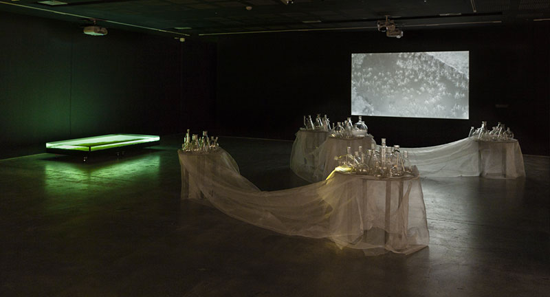 Janet Laurence and Andrew Belletty, River Journey, 2016, multimedia installation based on the audio and visual research archive of Professor Richard Kingsford. Installation view, UNSW Galleries, Sydney. Photo: silversalt