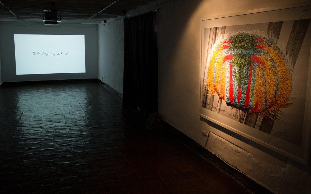 MFC_Installation view3_Cuenca Bienal_2016_ARC ONE.jpg
