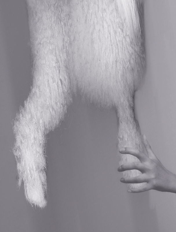 PAT BRASSINGTON   High rise  2006 Pigment print 85 x 65cm