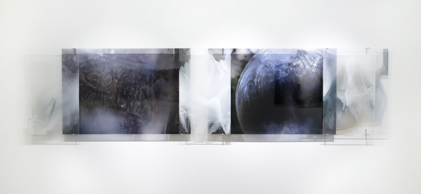 JANET LAURENCE   The Darkness in Glass  2007 Duraclear and oil pigment on acrylic 100 x 442 cm