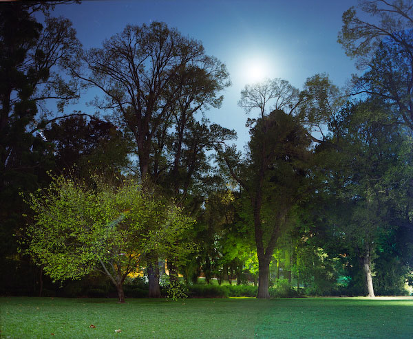 ANNE ZAHALKA   Fitzroy Gardens at Night, Hotel Suite  2008 Type C prints 75 x 92.5 cm