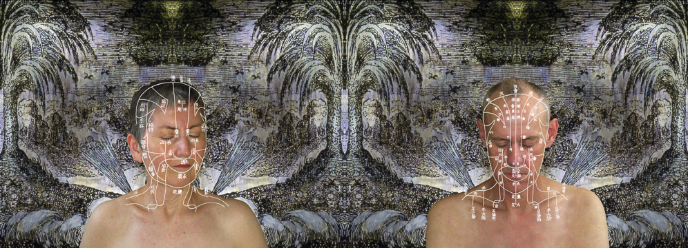 ROSE FARRELL & GEORGE PARKIN   Plum Blossom Meridian   2009 Digital inkjet on archival cotton rag 61.0 x 170.0 cm