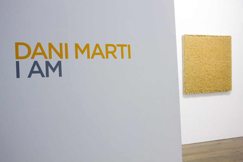 DANI MARTI   I AM  Installation view