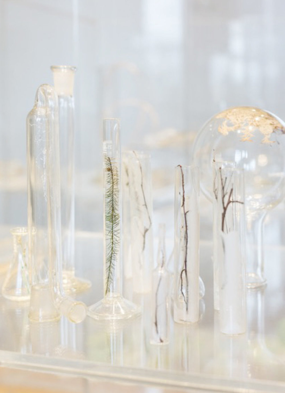 JANET LAURENCE   Waiting- a sanctuary for ailing plants  (Installation view) 2017 Scientific glass tubes, printed transparencies, seeds and other botanical matter, acrylic boxes, mirror Photographs by Frank Sperling
