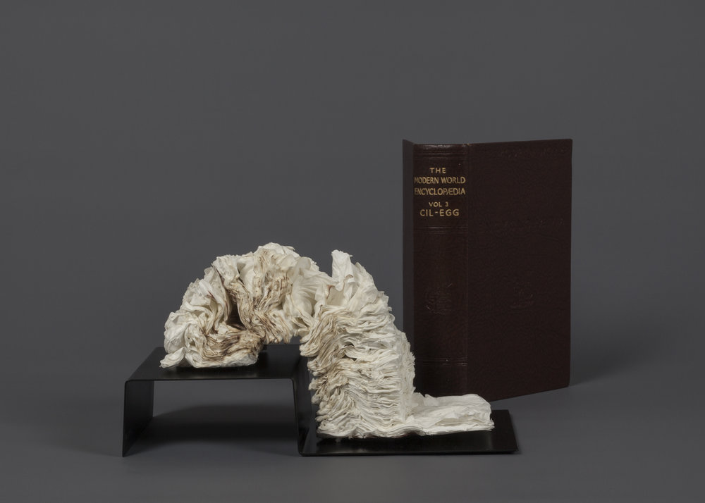 CYRUS TANG   The Modern World Encyclopaedia Vol 3  2017 Cremated book ashes, book cover Dimensions variable