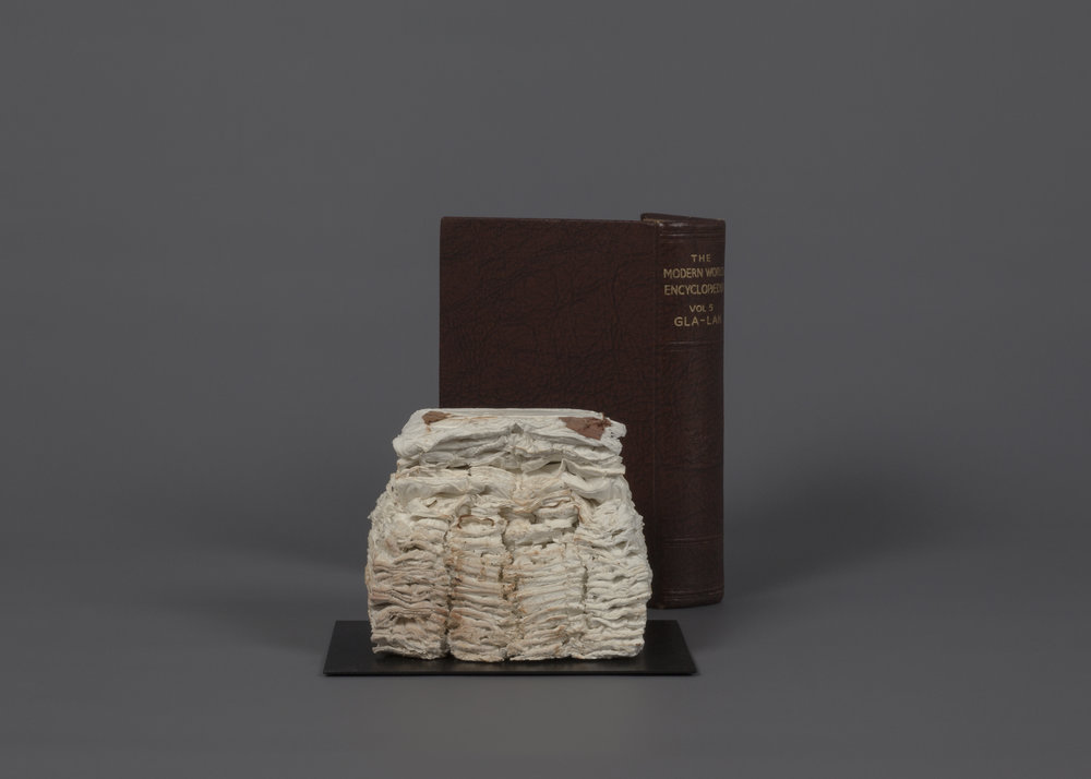 CYRUS TANG   The Modern World Encyclopaedia Vol 5  2017 Cremated book ashes, book cover Dimensions variable