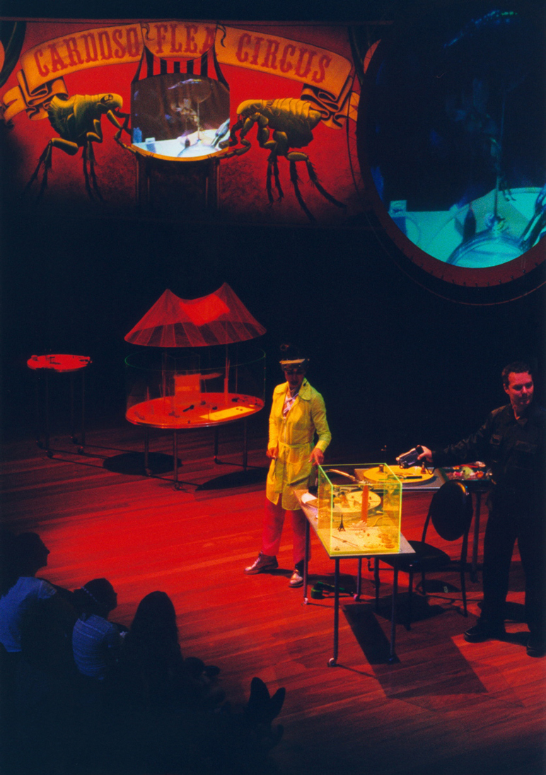 MARIA FERNANDA CARDOSO   Cardoso Flea Circus  2000 Sydney Opera House Performance View