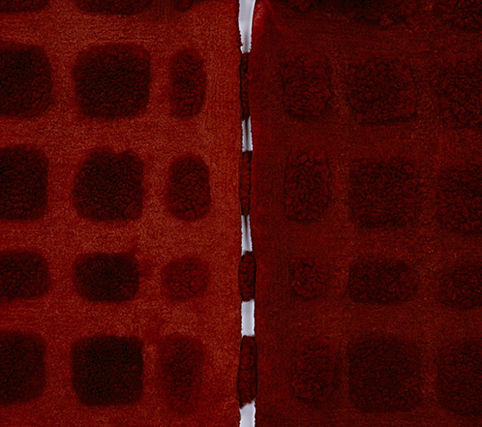 MARIA FERNANDA CARDOSO   Little Red - Sheep  (detail)  2002  8 dyed sheep skins Dimensions variable