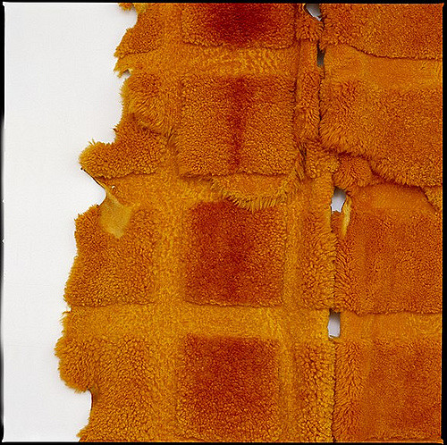 MARIA FERNANDA CARDOSO  Orange - Sheep (detail) 2002 Dyed sheep skins Dimensions variable