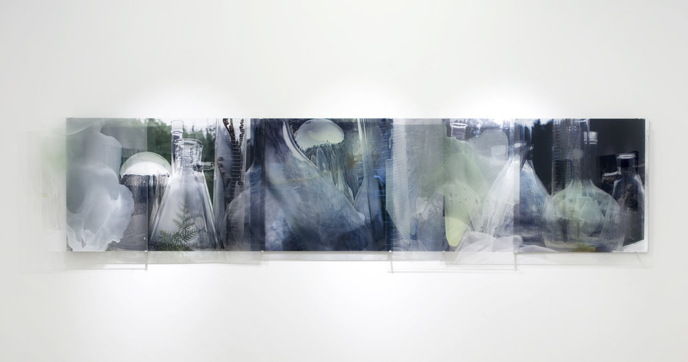 Janet Laurence,  Forensic Sublime (Crimes against the landscape series: Styx Forest),  2008, mirror, oil glaze, Duraclear on Shinkolite 100.0 x 455.0cm. Collection of McClelland Sculpture Park+Gallery.