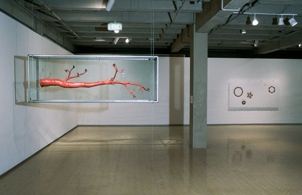 MARIA FERNANDA CARDOSO   Camouflage: The Art of Disappearing/ Camuflaje: El Arte de la Desaparicion  2001/2003 Installation view
