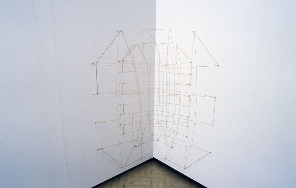 MARIA FERNANDA CARDOSO   Intestine Drawings/ Tripa  1994 Installation view