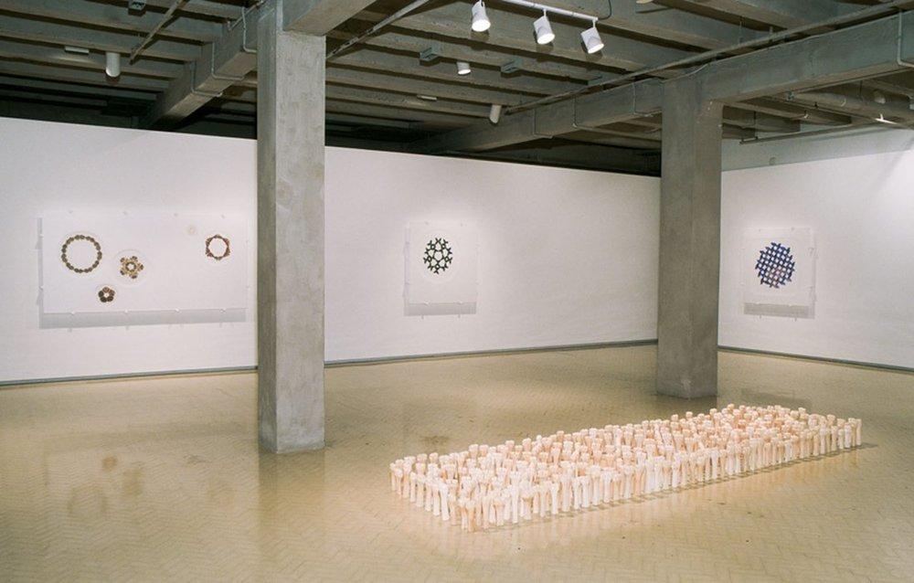 MARIA FERNANDA CARDOSO   Zoomorphia (Installation view) 2003, MCA