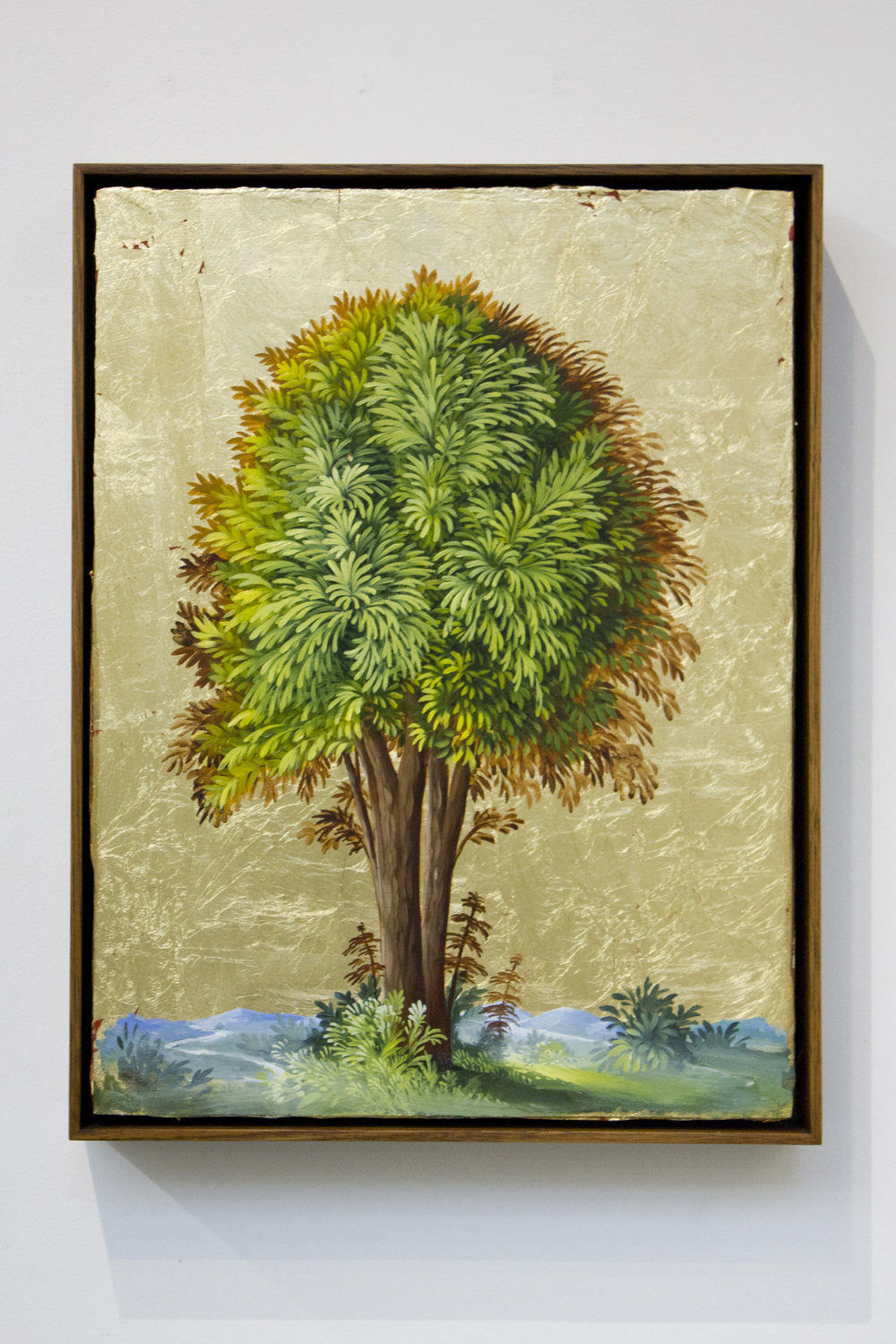 DAVERINGTON_Portrait of a tree No6_ARCONE.jpg