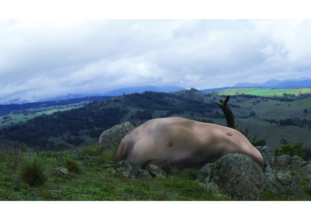 JULIE RRAP   Sam Valley (Fleshstones Series)  2003 Digital print 126 x 210 cm