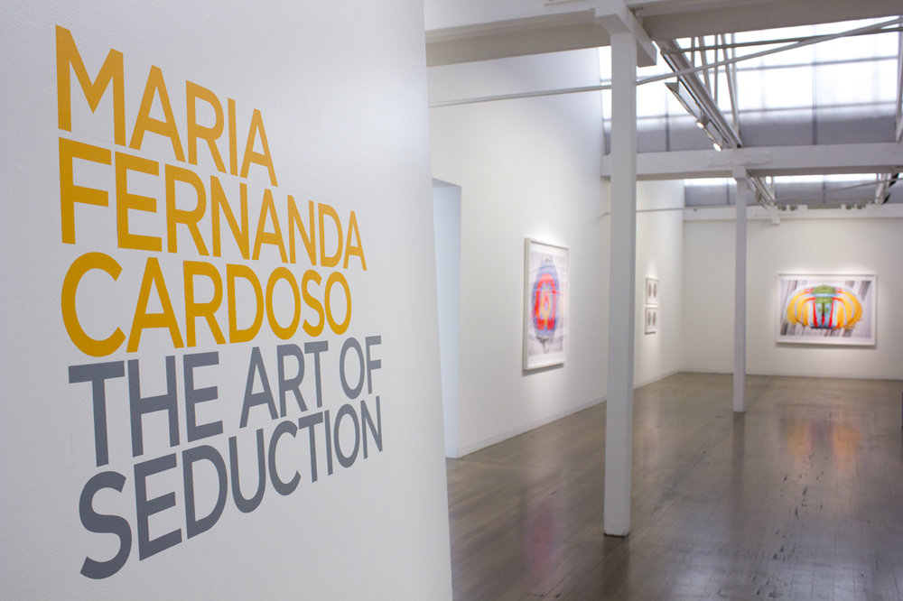 MARIA FERNANDA CARDOSO   The Art of Seduction  2018 Install view
