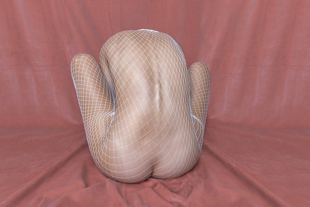 HONEY LONG & PRUE STENT   Fis-Net  2017 Archival pigment print Edition of 5 + 3 AP 58 x 87 cm