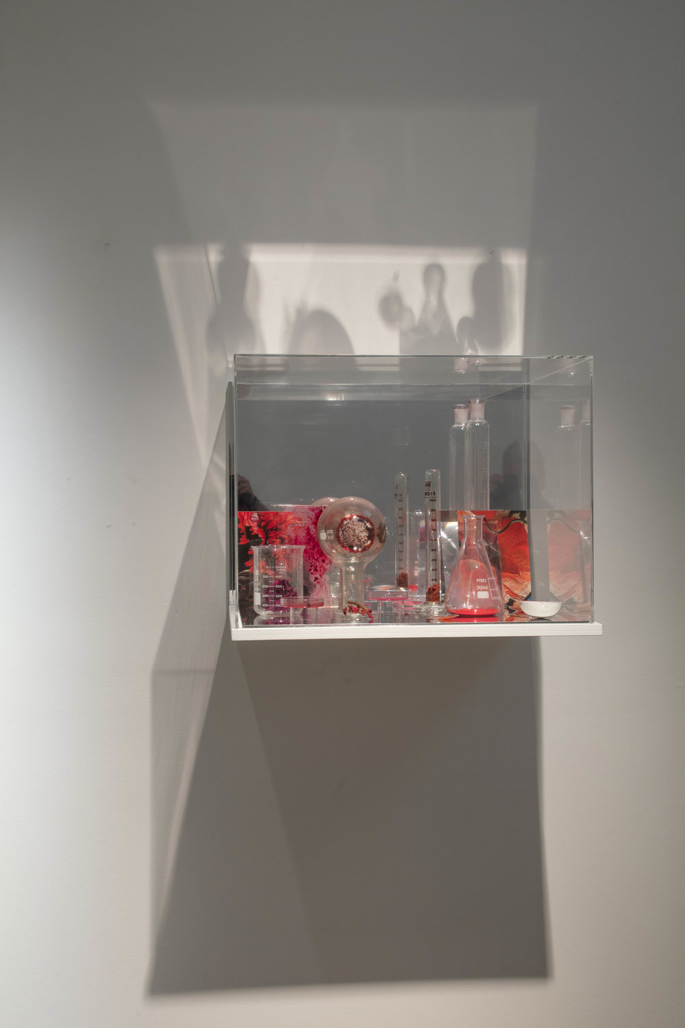 JANET LAURENCE   What Colour is the Sacred? (Red)  2018 Plywood, acrylic, mirror, details of Davidsz de Heem 'Still life with flowers in a glass vase' 1650 printed on archival cotton rag, Oil glaze on acrylic, acrylic lens, pigment, scientific glass, dried madder root, dried rose specimen, vandanite  45 x 60 x 45 cm