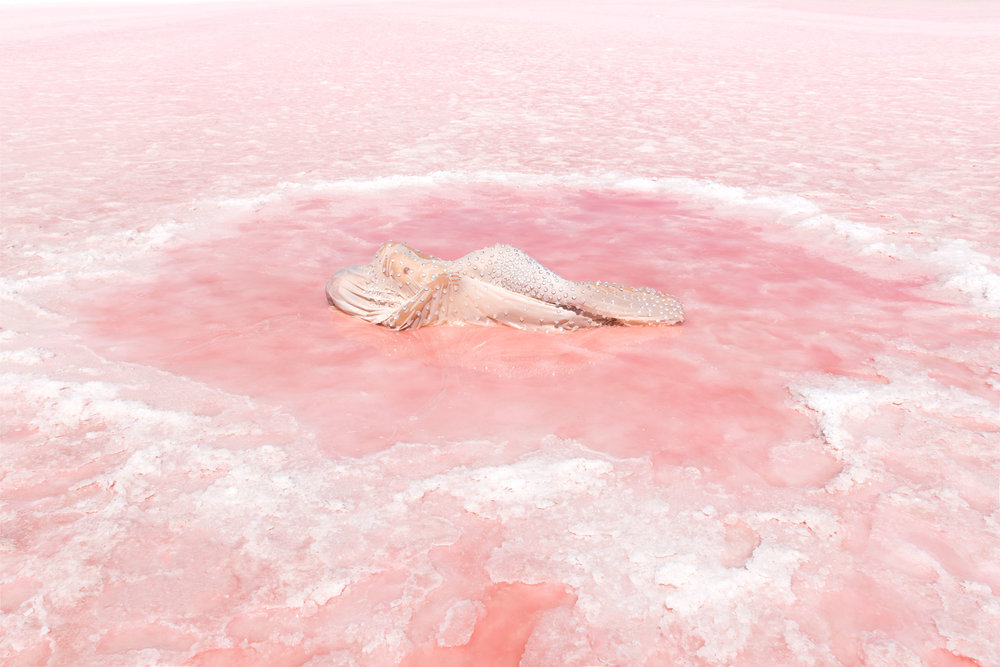 Honey Long & Prue Stent,  Salt Pool , 2018, archival pigment print, 72 x 108cm.