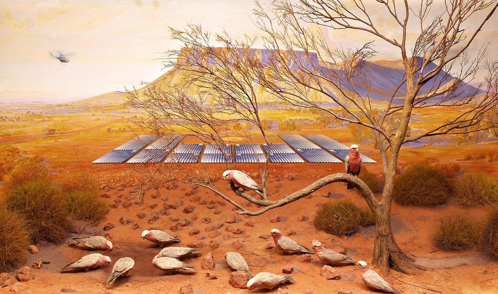 ANNE ZAHALKA   Galah, Mt Connor near Uluru, South Australia  2019 Archival pigment ink on rag paper 80 cm x 135 cm Edition of 6  Source: South Australia Museum