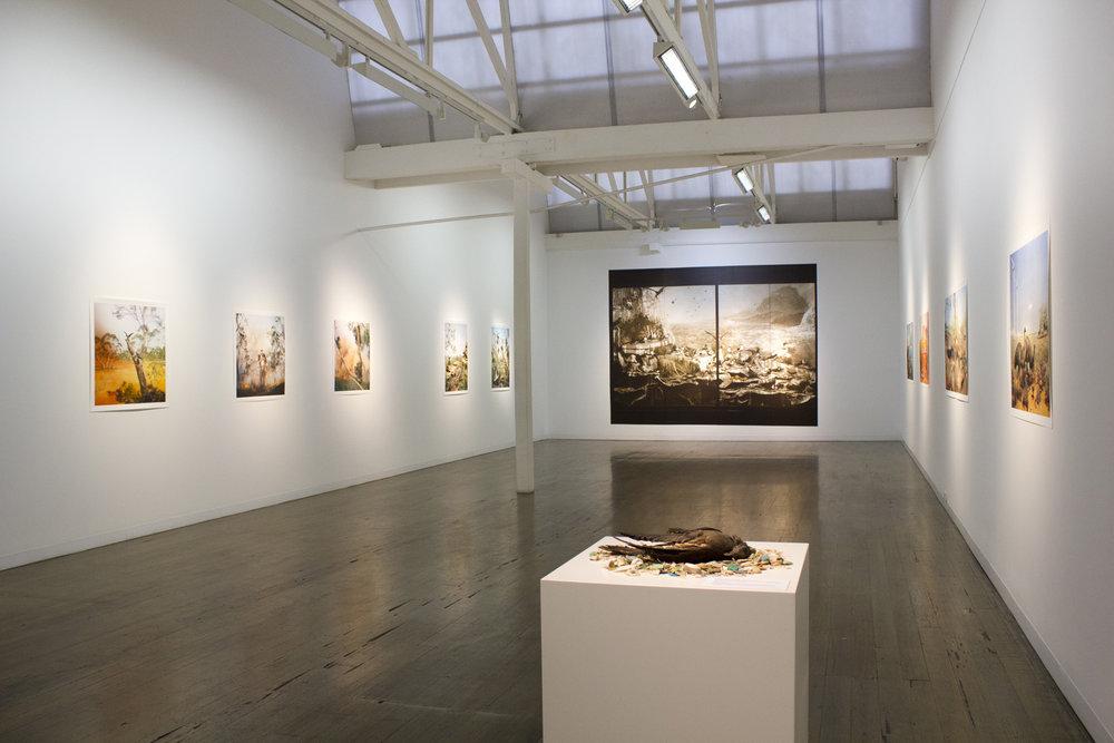 ANNE ZAHALKA   Wild Life, Australia  Installation view 2019