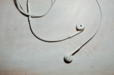 Standard Apple headphones will be enough.