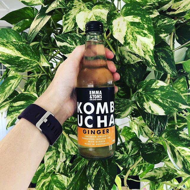 We've now got #emmaandtoms ginger Kombucha 😃  #kombucha #sandgate
