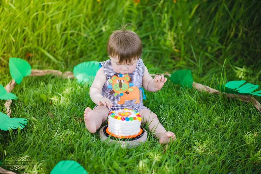 Photography By Andrade Birthday Cake Smash-20.jpg