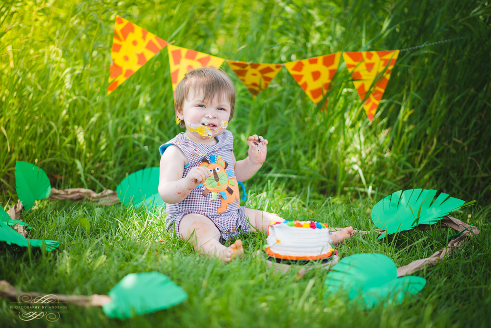 Photography By Andrade Birthday Cake Smash-38.jpg