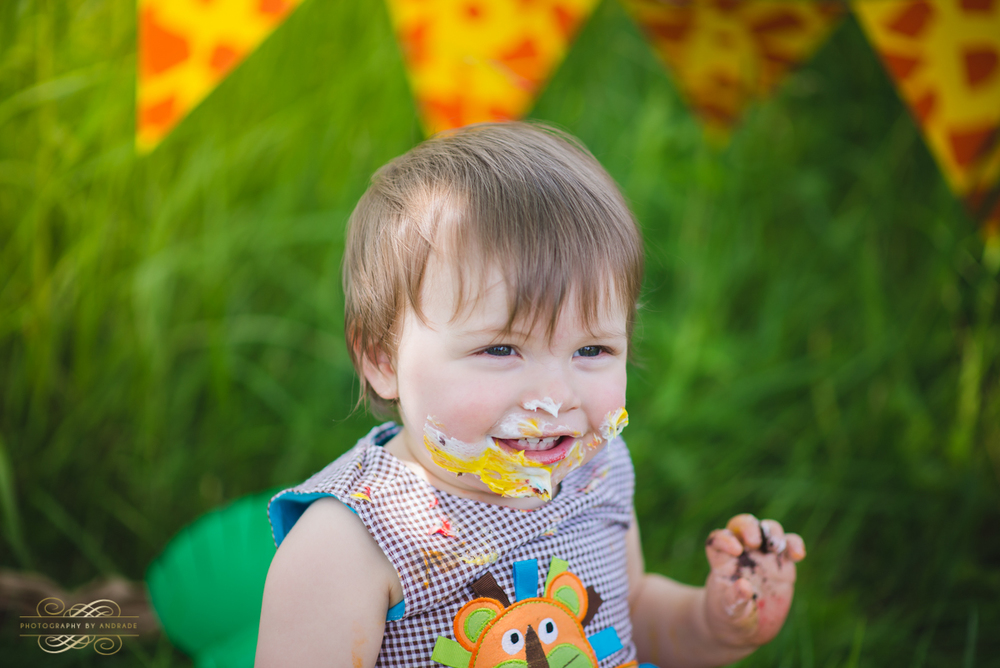 Photography By Andrade Birthday Cake Smash-41.jpg