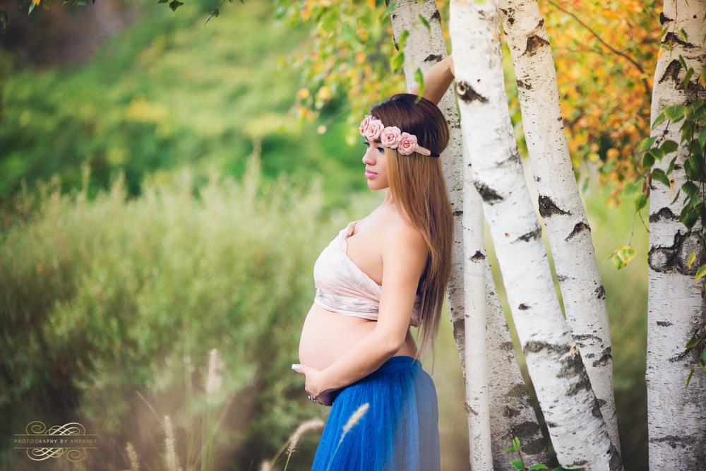 Cantigny Park Maternity Fine Art Photography Wheaton Photographer-9.jpg