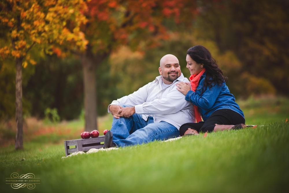 Fall Engagement Portrait Session Naperville Aurora-1.jpg