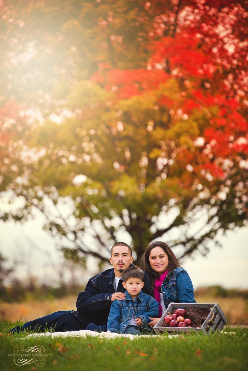 Fall Portrait Session Naperville Aurora-2.jpg