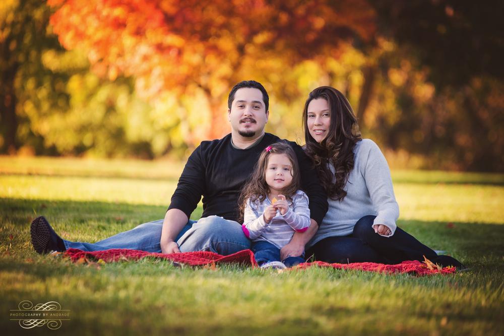 Fall Family Portrait Session Naperville-3.jpg