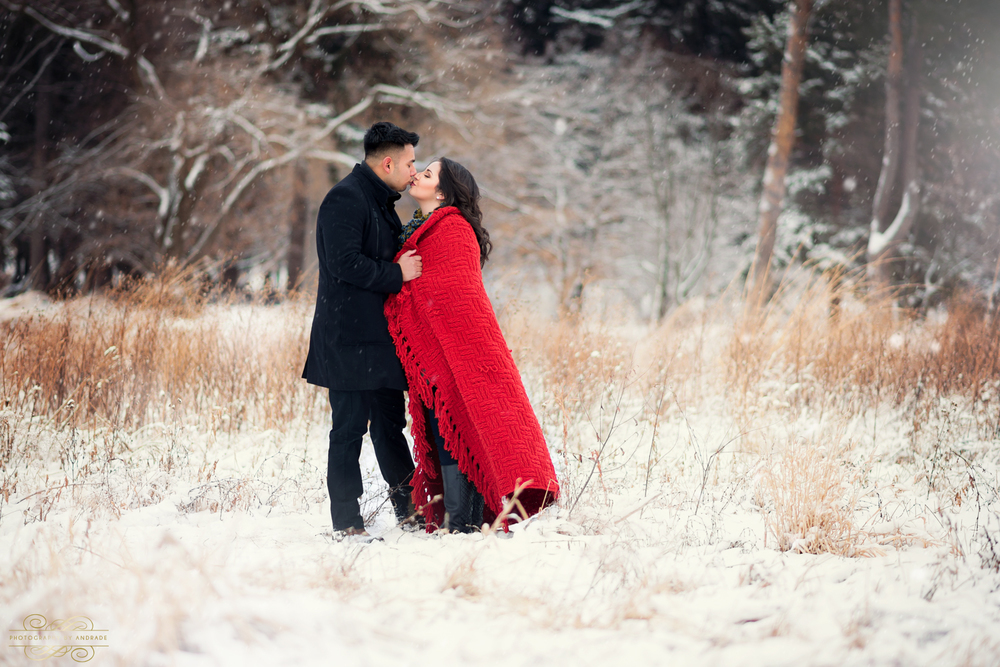 Morton Arboretum Engagement Session by Photographybyandrade.com-9.jpg