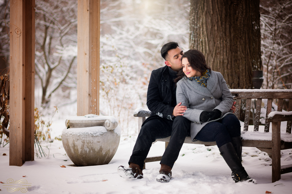 Morton Arboretum Engagement Session by Photographybyandrade.com-14.jpg
