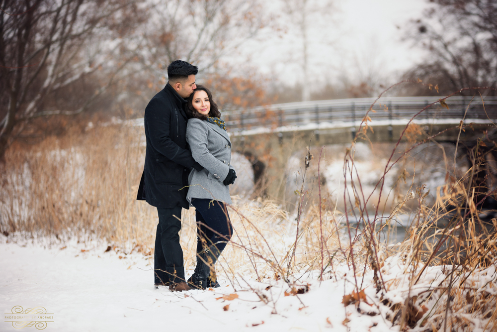 Morton Arboretum Engagement Session by Photographybyandrade.com-23.jpg