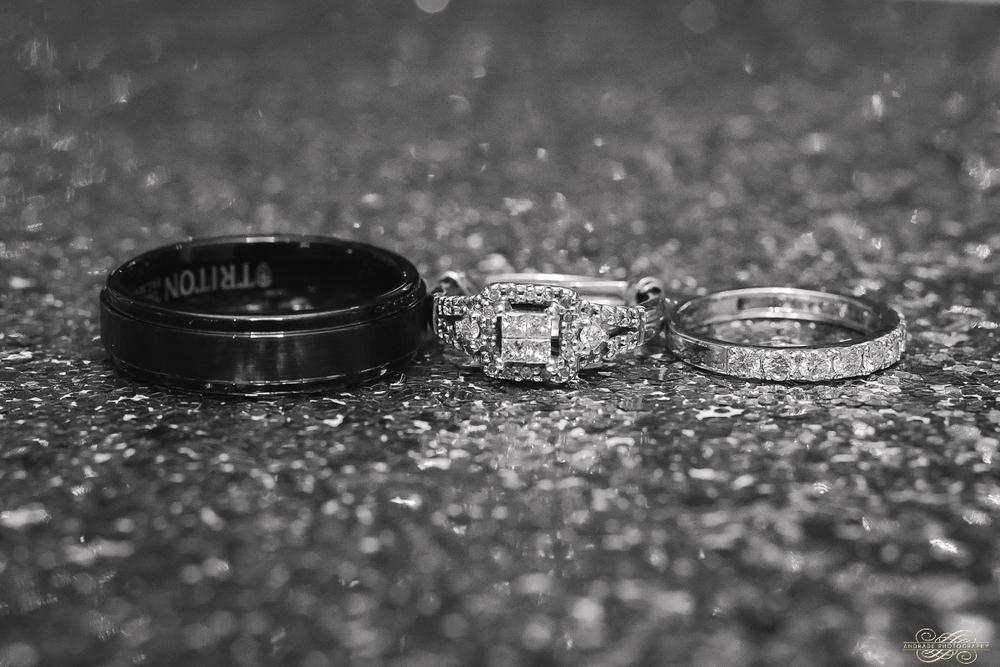 Umer + Abeer The Empress Banquet Wedding Photography Addison Illinois_0004.jpg