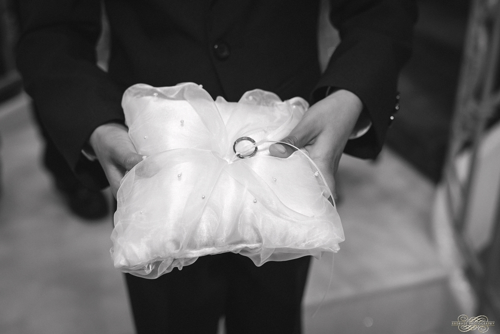 Umer + Abeer The Empress Banquet Wedding Photography Addison Illinois_0021.jpg
