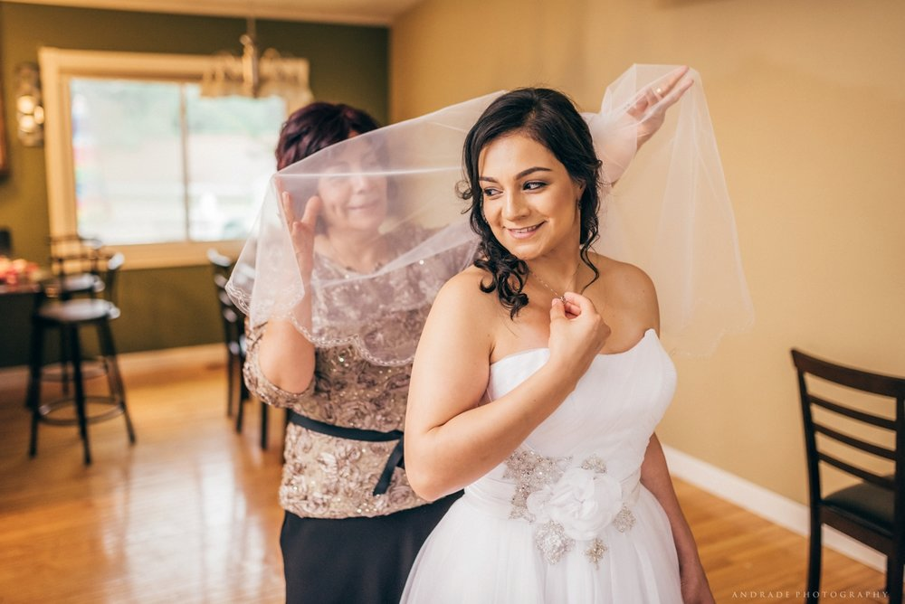 Chicago Wedding Photographer_0008.jpg