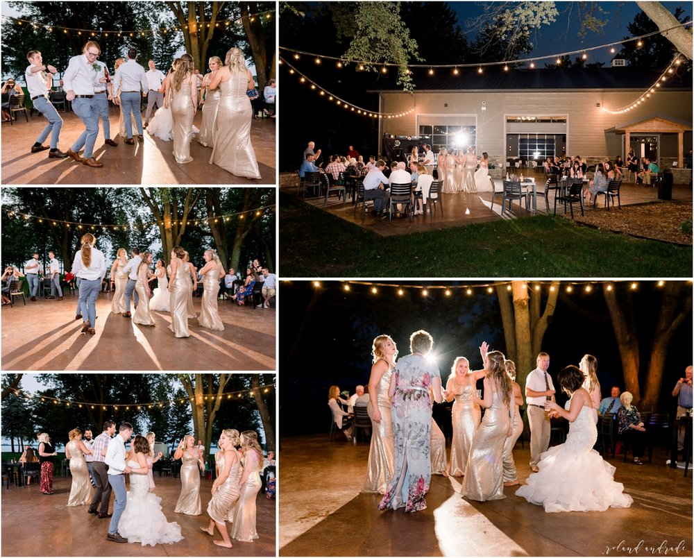 Round Lake Vineyards Wedding, Chicago Wedding Photographer, Aurora Wedding Photographer, Best Photographer In Aurora, Best Photographer In Chicago_0045.jpg