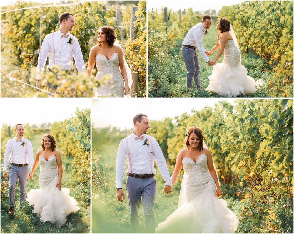 Round Lake Vineyards Wedding, Chicago Wedding Photographer, Aurora Wedding Photographer, Best Photographer In Aurora, Best Photographer In Chicago_0060.jpg