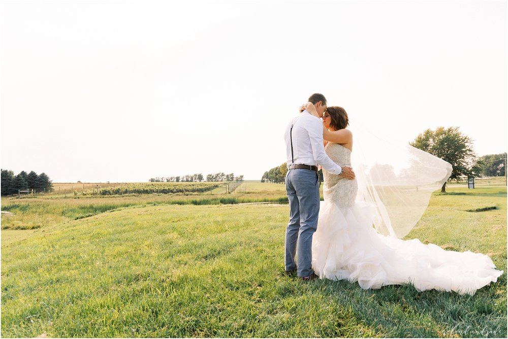 Round Lake Vineyards Wedding, Chicago Wedding Photographer, Aurora Wedding Photographer, Best Photographer In Aurora, Best Photographer In Chicago_0062.jpg