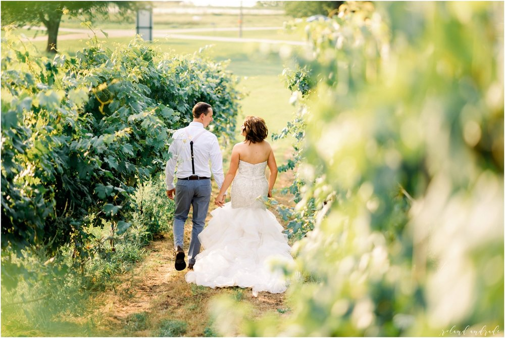 Round Lake Vineyards Wedding, Chicago Wedding Photographer, Aurora Wedding Photographer, Best Photographer In Aurora, Best Photographer In Chicago_0069.jpg