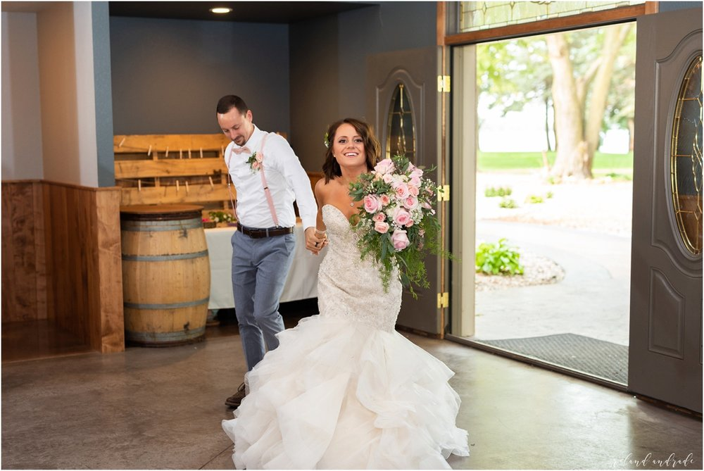 Round Lake Vineyards Wedding, Chicago Wedding Photographer, Aurora Wedding Photographer, Best Photographer In Aurora, Best Photographer In Chicago_0081.jpg