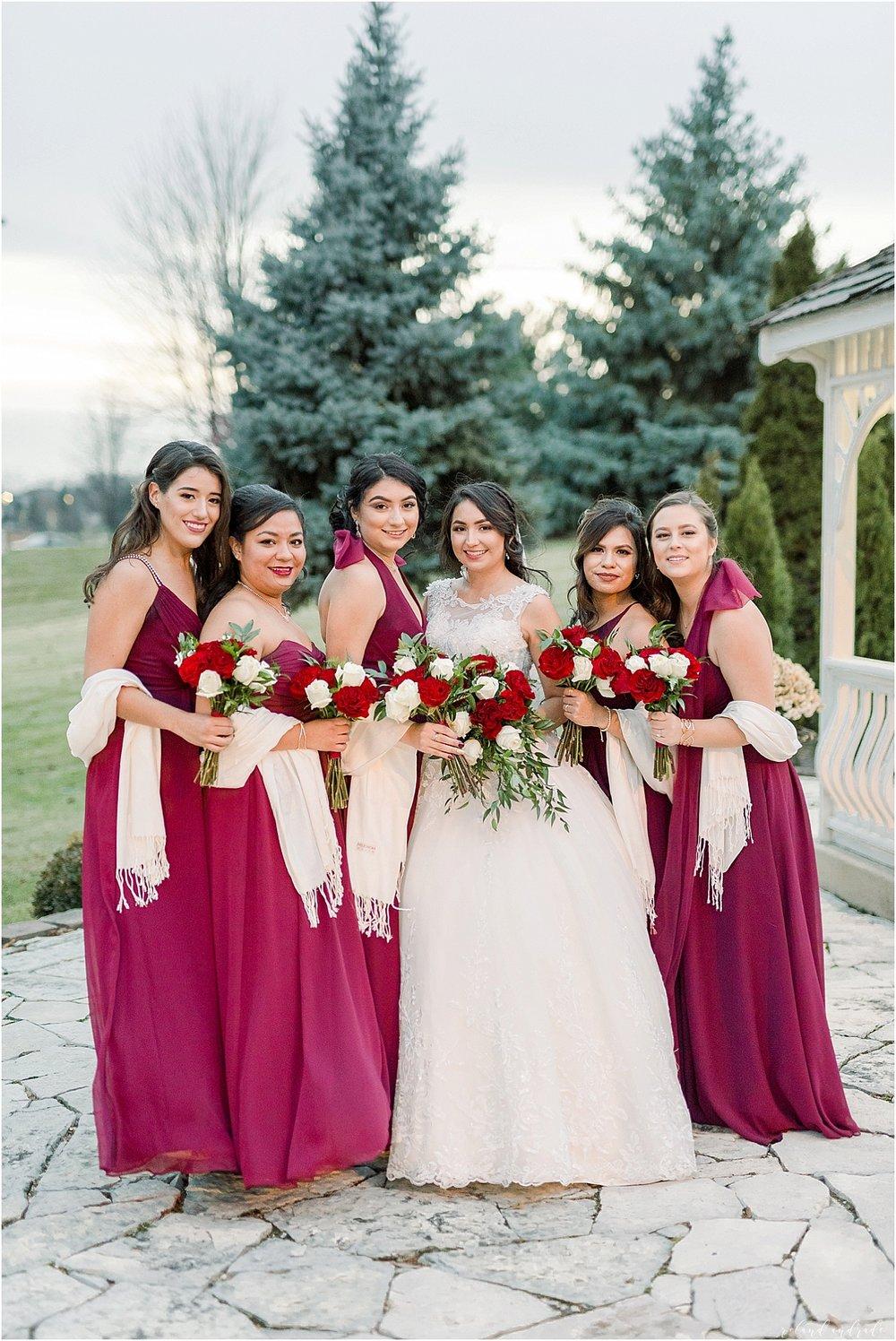 Alpine Banquets Wedding, Chicago Wedding Photographer, Naperville Wedding Photographer, Best Photographer In Aurora, Best Photographer In Chicago_0043.jpg