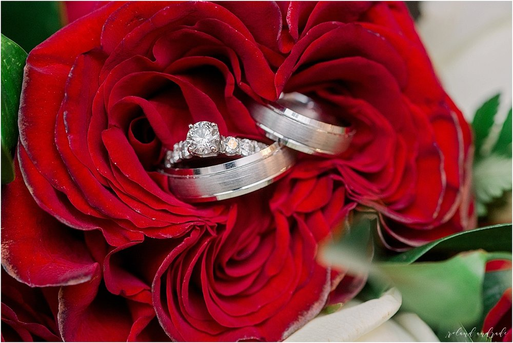 Alpine Banquets Wedding, Chicago Wedding Photographer, Naperville Wedding Photographer, Best Photographer In Aurora, Best Photographer In Chicago_0064.jpg