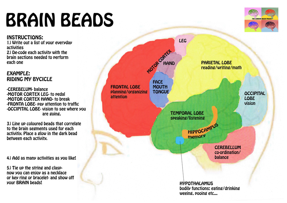 Brain beading_instructions.jpg